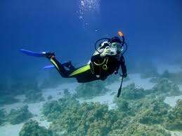 Mozdex Life Insurance Group - Life Insurance for Scuba Divers Image